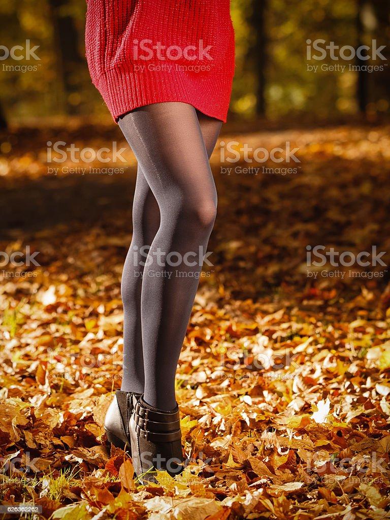 Herbst Mode. Weibliche Beine in Schwarze Strumpfhose im Freien – Foto