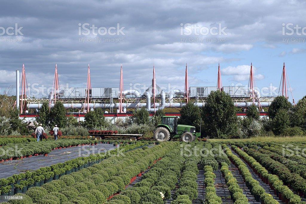 Otoño campo en frente de la biotecnología factory foto de stock libre de derechos