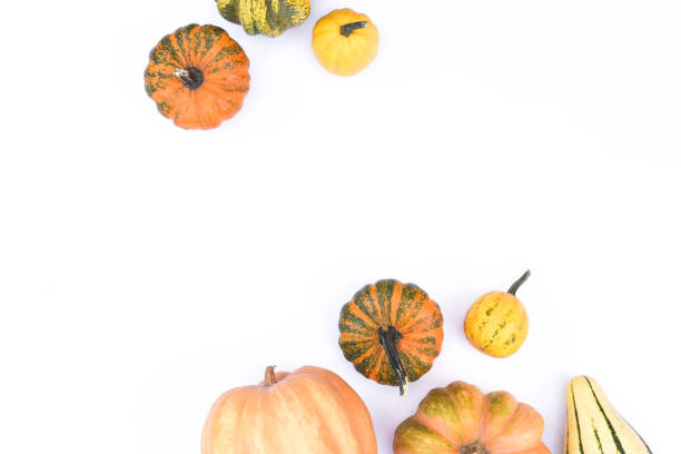 Autumn flat lay on an isolated white background made of pumpkins picture id1177273137?b=1&k=6&m=1177273137&s=612x612&w=0&h=llnaa iecbg7ytgvhqn2pg3zikmyqmtrzzbfduflz3e=