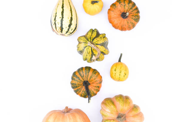 Autumn flat lay on an isolated white background made of pumpkins picture id1178348699?b=1&k=6&m=1178348699&s=612x612&w=0&h=ejxebazrmyabbkkx jxxxyjbchuueattxna7kyemdoo=