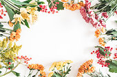 Autumn floral composition. Frame made of fresh flowers on white background. Autumn, fall concept. Flat lay, top view, copy space