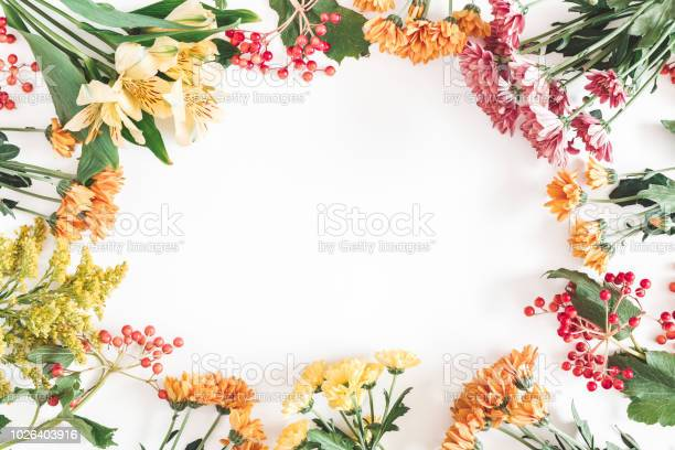 Autumn floral composition frame made of fresh flowers on white fall picture id1026403916?b=1&k=6&m=1026403916&s=612x612&h=eopgtwyqke3hleduaanan5p ud4tyeaostqunbadrjy=