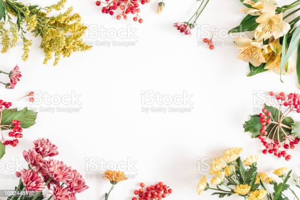 Autumn floral composition frame made of fresh flowers on white fall picture id1032448172?b=1&k=6&m=1032448172&s=612x612&h=luzql9easan ijv1cdid2pk hghynpbsdo3l3wismcm=