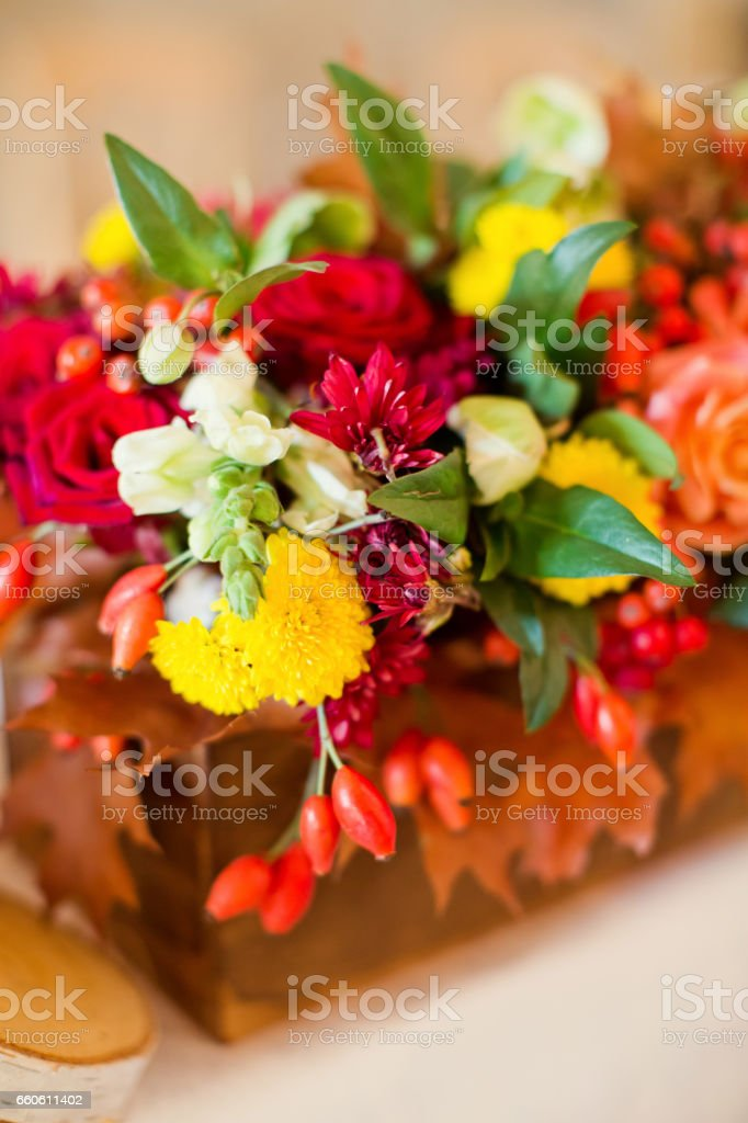 autumn flower composition royalty-free stock photo