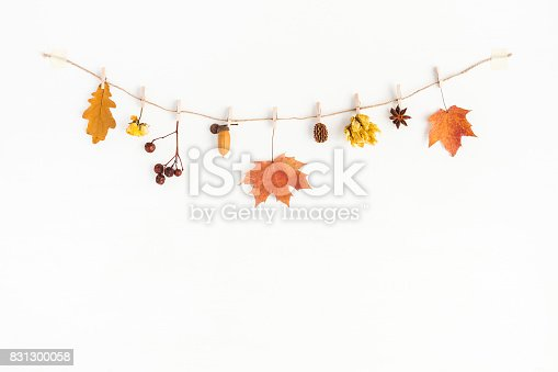 istock Autumn flowers and leaves composition. Flat lay, top view 831300058