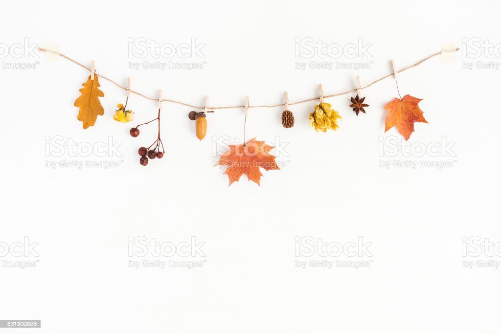 Autumn flowers and leaves composition. Flat lay, top view stock photo