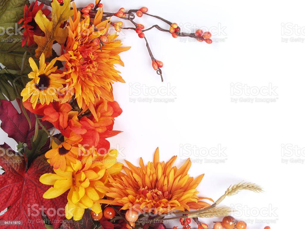 Autumn Flowers Frame stock photo