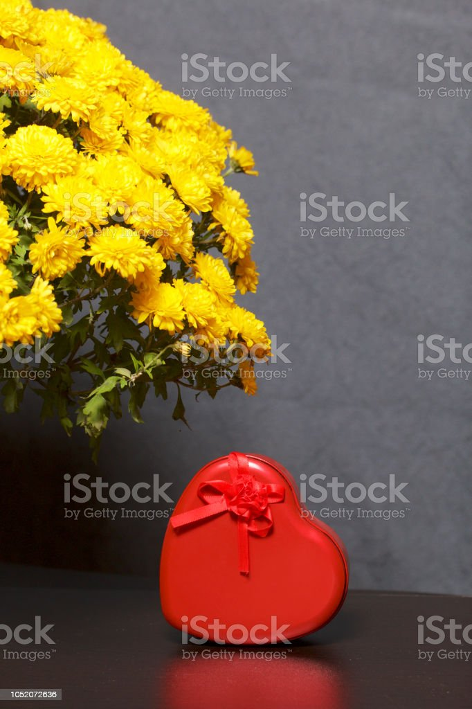 Autumn flowers in a pot. Yellow Chrysanthemum. Next is a gift in a...