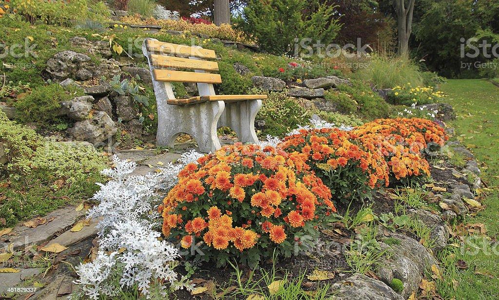 Autumn flowers in a rock-garden Ontario, Canada stock photo