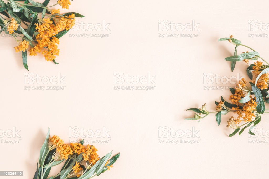 Autumn flowers on pastel beige background. Flat lay, top view stock photo