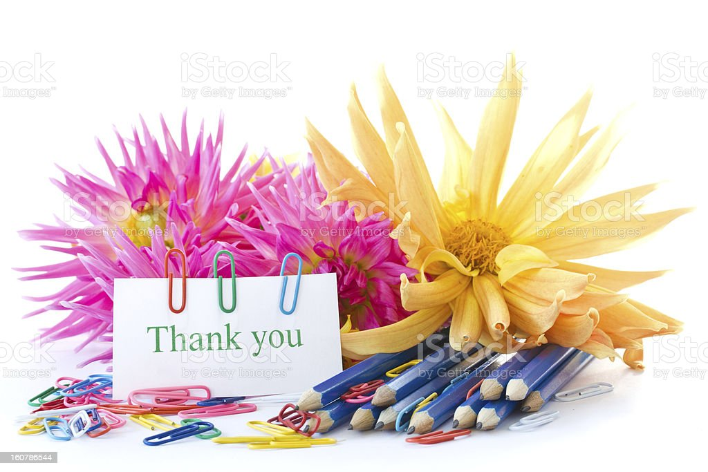 Autumn flowers with book and pencils royalty-free stock photo