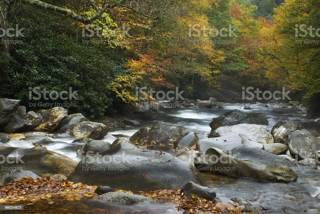 Autumn Flowing Water Great Smoky Mountains royalty-free stock photo