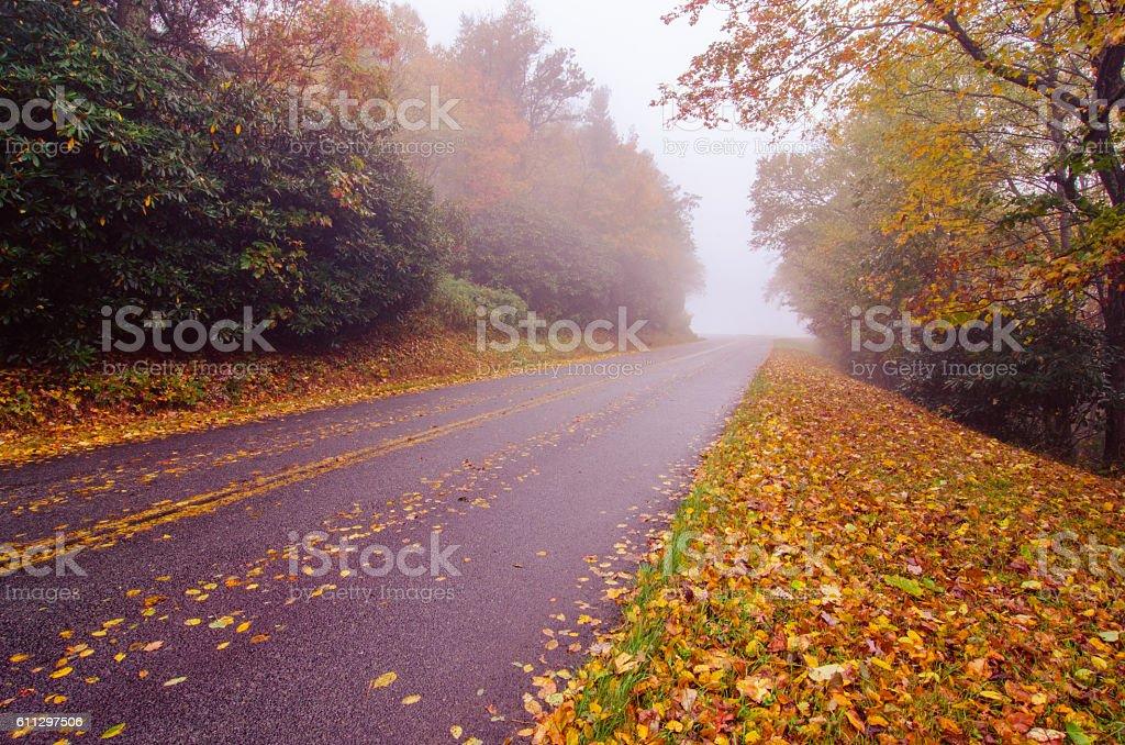 autumn foggy day along blue ridge parkway stock photo