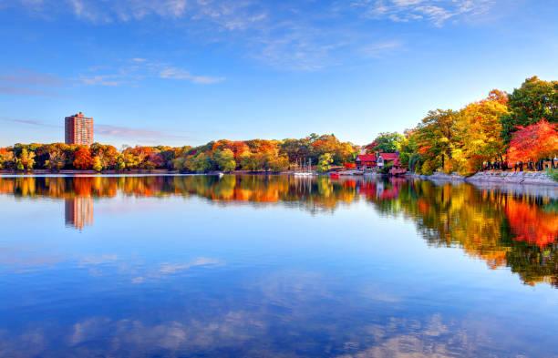 feuillage automnal le long de l'étang de la jamaïque à boston - feuillage automnal photos et images de collection