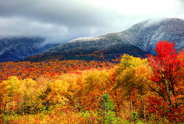 Autumn foliage and snow on the slopes of Mount Washington Mount Washington is the highest peak in the Northeastern United States at 6,288.2 ft and the most prominent mountain east of the Mississippi River. white mountain national forest stock pictures, royalty-free photos & images