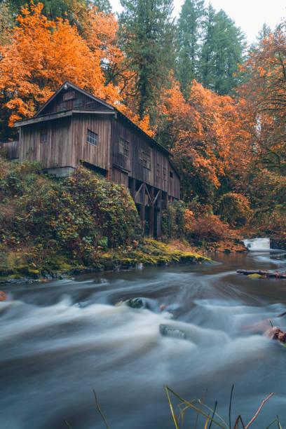 Autumn foliage at the Cedar Creek Grist Mill stock photo