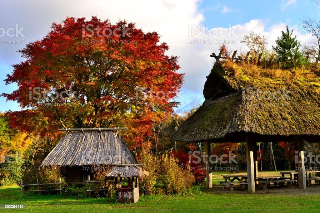 Autumn Foliage in Fuji Five Lakes Region, Japan stock photo