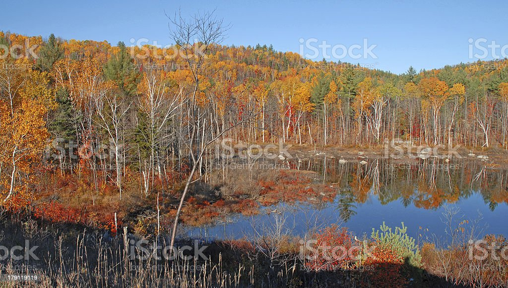 Autumn Foliage in the Adirondacks, New York, USA stock photo
