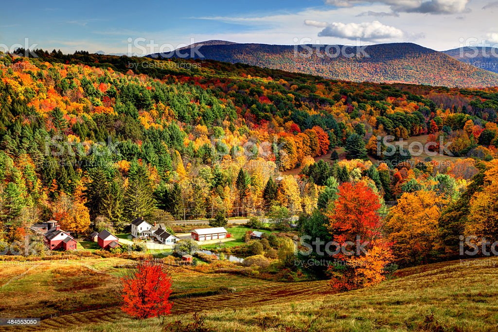Autumn foliage in the Bershires region of Massachusetts stock photo
