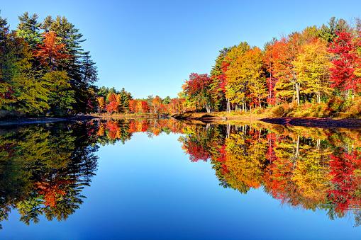 Autumn foliage in the Monadnock Region of New Hampshire