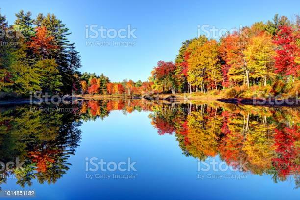 Photo of Autumn foliage in the Monadnock Region of New Hampshire