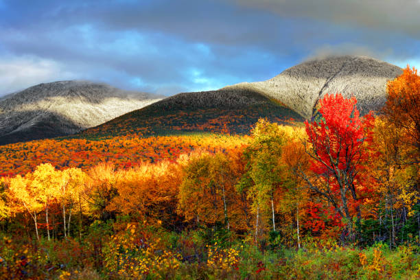 Autumn foliage in the White Mountains of New Hampshire Peak fall foliage and snowcapped mountians in New Hampshire's White Mountains white mountain national forest stock pictures, royalty-free photos & images