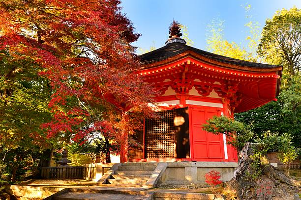 autumn foliage of tofuku-ji temple, kyoto, japan - tapınak stok fotoğraflar ve resimler