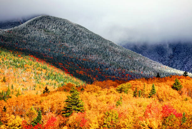 Autumn foliage on the slopes of Mt Washington Mount Washington is the highest peak in the Northeastern United States at 6,288.2 ft and the most prominent mountain east of the Mississippi River. mount washington new hampshire stock pictures, royalty-free photos & images