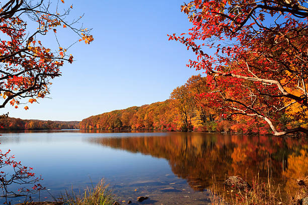 Autumn Foliage over lake Autumn Foliage over lake, New York State white mountain national forest stock pictures, royalty-free photos & images