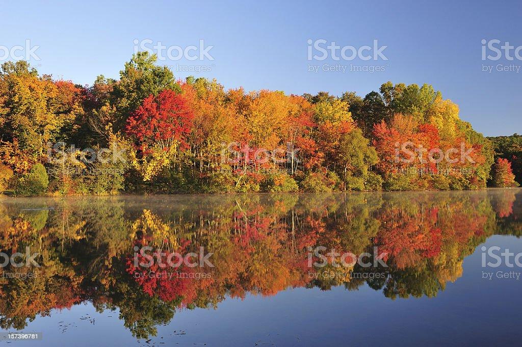 Autumn Foliage Reflection stock photo