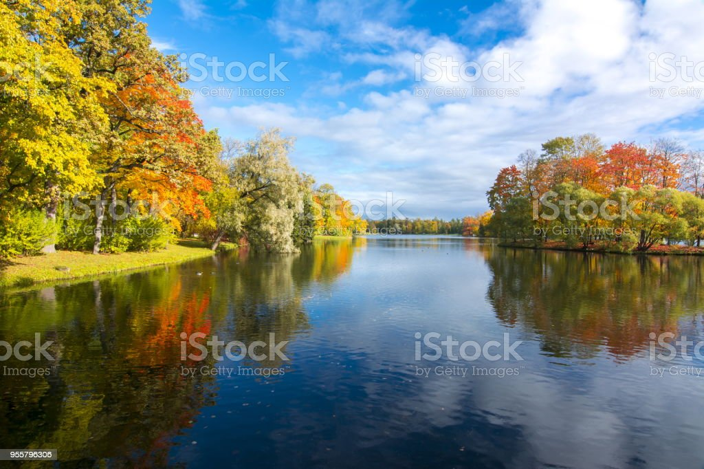 Autumn foliage with reflection in water stock photo