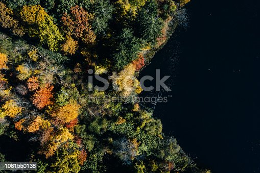 istock Autumn forest aerial view with lake 1061550138