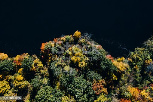 istock Autumn forest aerial view with lake 1061550160