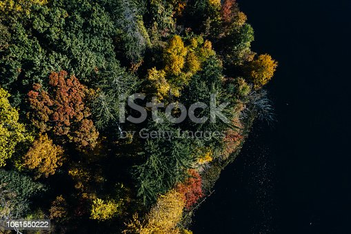 istock Autumn forest aerial view with lake 1061550222