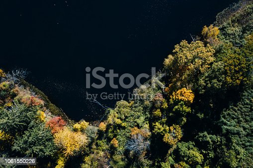 istock Autumn forest aerial view with lake 1061550226