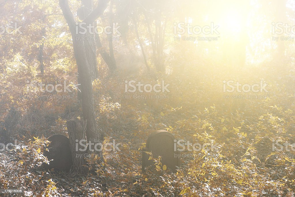 Autumn forest and gravestone royalty-free stock photo