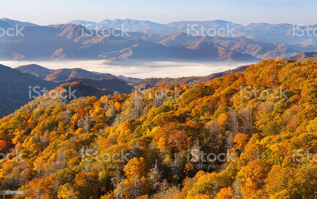 Autumn Forest and Mountains stock photo
