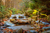 istock Autumn forest and river scene with waterfall. Long exposure. Seasonal vibes and warm atmosphere. 1284576921