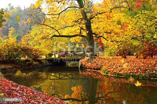 istock Autumn forest. Beautiful rural scenery. 1038690870
