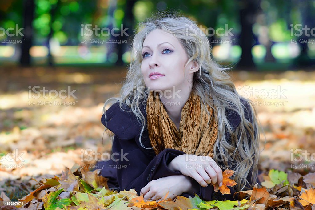 Autumn forest beauty on fallen leaves stock photo