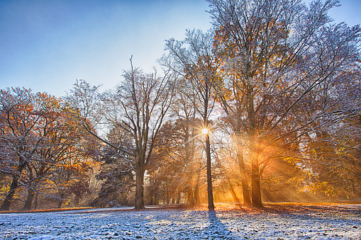 1038696838 istock photo Autumn forest covered with first snow powder.. Beautiful rural scenery. 1047635270