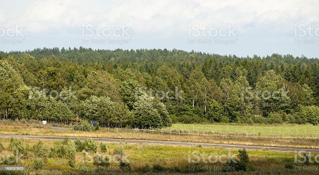 Autumn forest in a green Park - Norway royalty-free stock photo