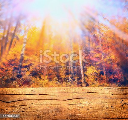 470927602 istock photo Autumn forest in sunlight and wooden table , nature background, toned 477903642