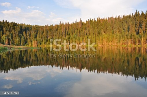 istock Autumn forest lake reflection 647769760