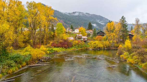 autumn forest on the riverside - leavenworth washington stock photos and pictures