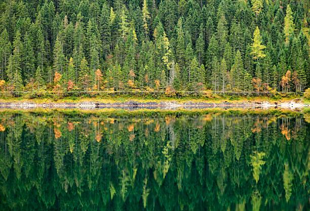 Forêt d'automne reflète dans le calme lac. Gosausee, en Autriche. - Photo