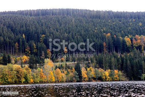istock Autumn forest reflected in the surface of the lake Titisee, Germany 840393048