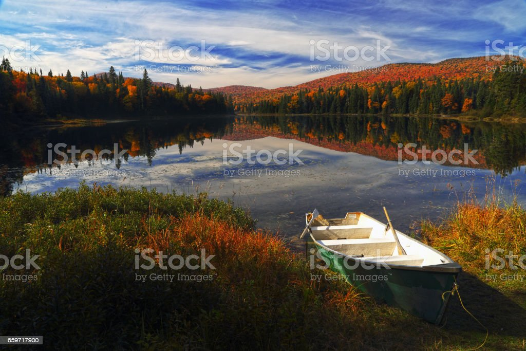 Autumn forest reflected in water stock photo