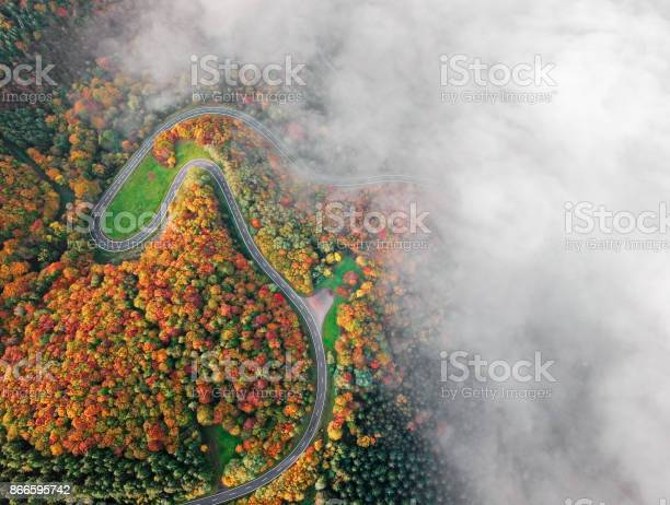 Photo of Autumn forest road go down into morning fog. Mosele Valley, Germany.
