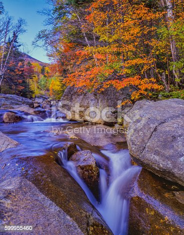 Autumn color fills the hardwood forest along the Peabody River in the White Mountains of New Hampshire